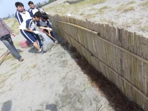 中高生徒会 堆砂垣ボランティア実施しました